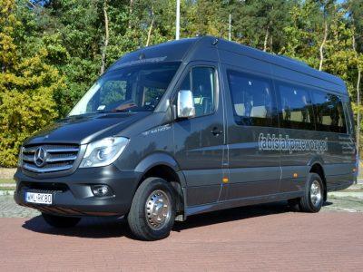 Minibus Mercedes Sprinter 519 EURO VI